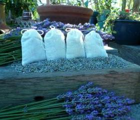 Farm Fresh Organic Lavender in Cotton Muslin Sachets, 4 for $5